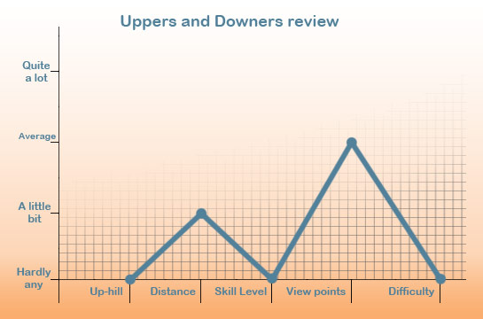 uppers and downers review