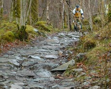 snowdonia-trails